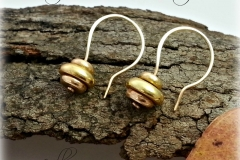 Earrings with header